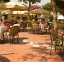 فندق بيراميدز بارك - مقهى - أجازات مصر