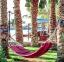 فندق سلطان جاردنز   - منظر عام - اجازات مصر