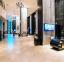 فندق ذا رويال باراديس - استقبال - أجازات مصر