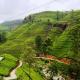 رحلات شهر العسل سريلانكا - فندق أوزو