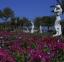 التماثيل اليونانيه التي توجد في حدائق فندق سي