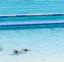 حمام سباحة فندق بيل فيو - مرسي مطروح - اجازات