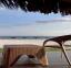 شاطئ فندق سيزر- الساحل الشمالي - اجازات مصر