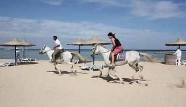 فندق هارموني مكادي - ركوب خيل - أجازات مصر